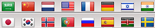 Translation Flags
